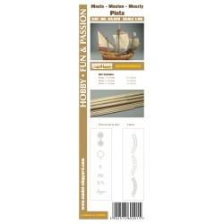 AS:019 Masten mit Lasercut Detailsatz Pinta